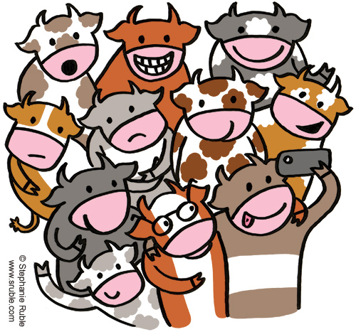 eleven cows with various facial expressions and spots, stripes, and solid coats, in greys, brown, tan, and rust colors, are posing for a selfie